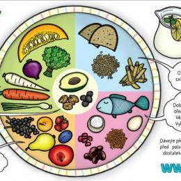 Pestrý potravinový tanier – zdravé zloženie stravy