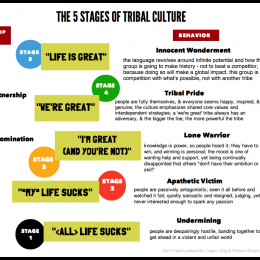 Tribal Leadership: 5 stavov kultúry kmeňa